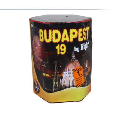 CRC9542PTEE BUDAPEST BY NIGHT 19s